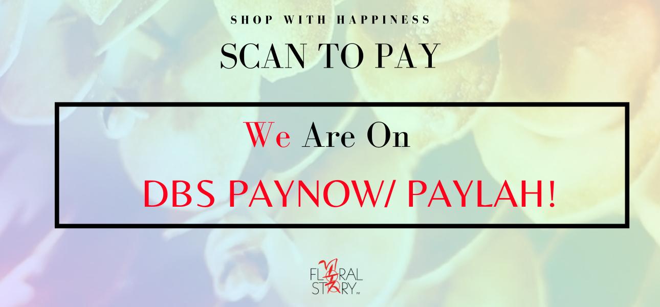 Scan & Paylah