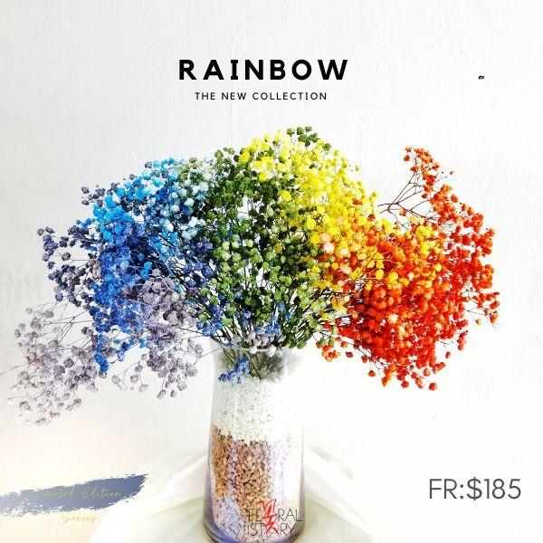 $185 RAINBOW IN VASE